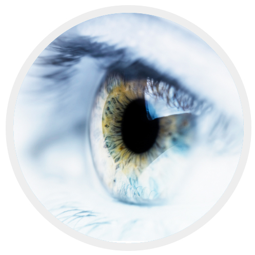 Retinal Vascular Disorders